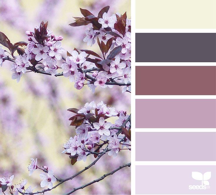 Color Spring via @designseeds