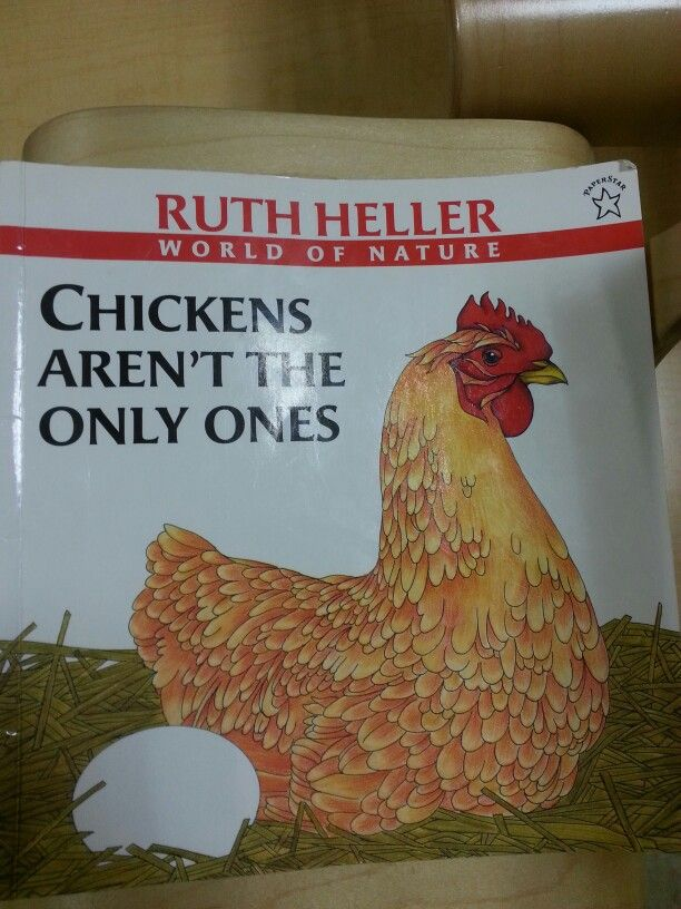 About other animals that lay eggs   Future Classroom Library!   Pinte ...