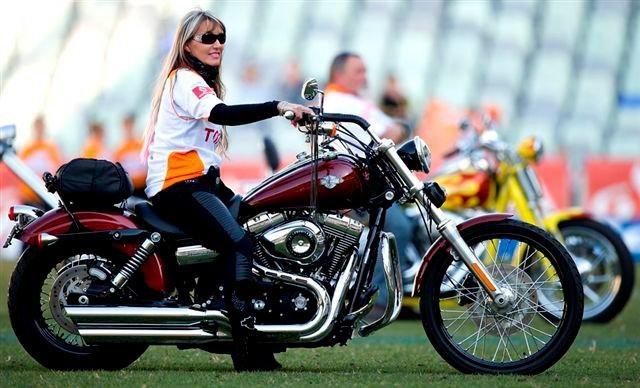 Free State Cheetahs Rugby - Harley's