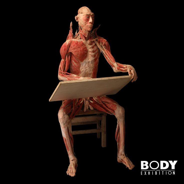 Body the Exhibition - výstava Praha
