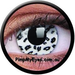 White Leopard Crazy Contact Lenses Pair - PimpMyEyes.com.au | PimpMyEyes