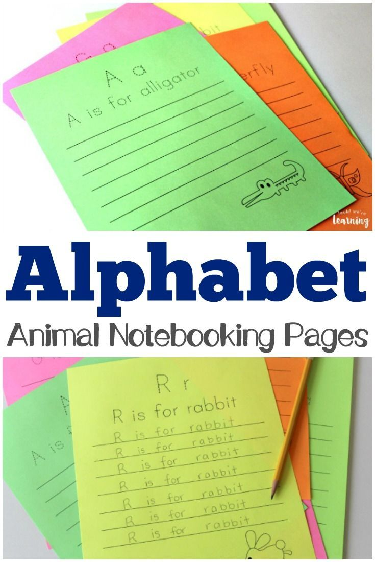 Alphabet Animal Notebooking Pages