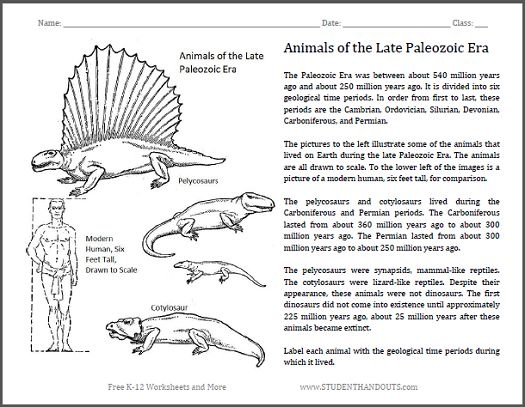 animals of the late paleozoic fun science worksheet for grades 4 and up free to print pdf. Black Bedroom Furniture Sets. Home Design Ideas