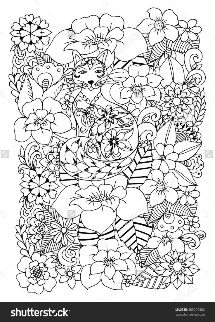 zentangle cat in the flowers doodle drawing coloring book anti stress for adults 485200582