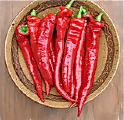 Paprika 'Sweet Nardello' Den godaste att steka, god att torka till paprikapulver. Tidig, pålitlig, rikgivande.15-20 cm frukt, 50-70 cm planta. En delikatess. 30kr Runåbergs. Eko.