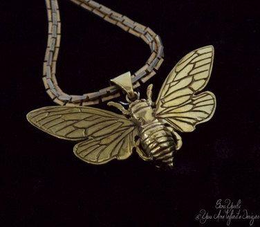 Immortal cicada wish locket pendant in my Etsy shop https://www.etsy.com/listing/216919089/cicada-totem-brass-wish-locket-pendant