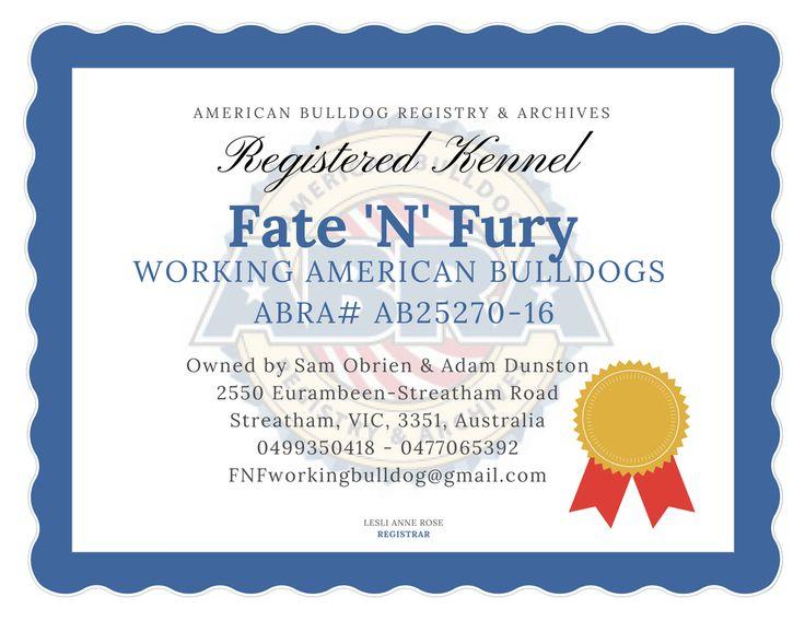 Fate N Fury Working American Bulldogs