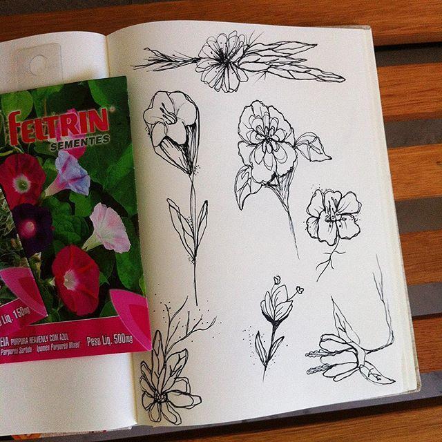 ela vem chegando, e eu feliz vou esperando... 🌼 . . . #lovely #spring #draw #flower #love #modicesinspira #flores #drawingoftheday #sketch #mysketchbook #draw2me #seeds #flash #delicated #tonoadorofarm #instagood #inspiration #flowerpower #girl #debycomd #flashtattoo