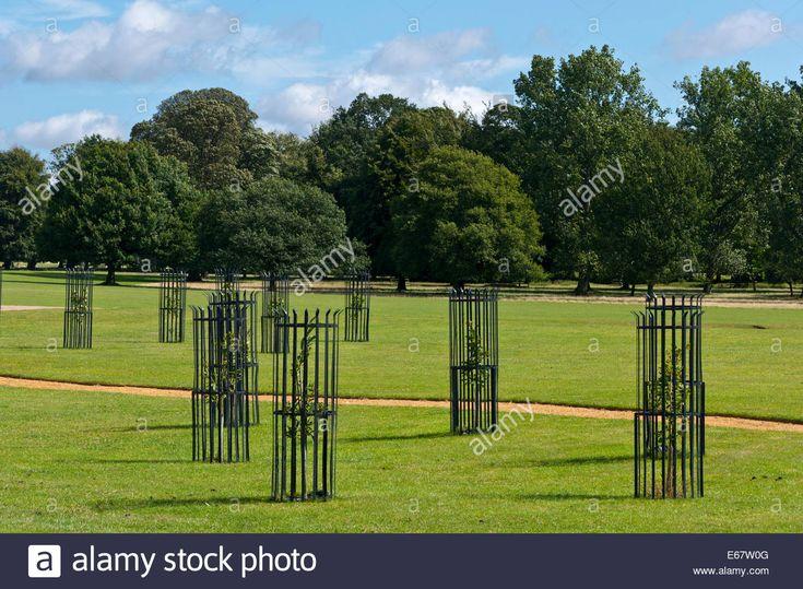 Garden Fence Ideas Diy Cheap