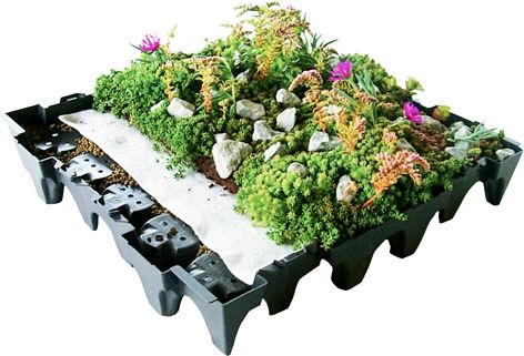 COMPLETA, önceden bitkilendirilmiş, kullanıma hazır, geri dönüşümlü polipropilenden üretilen, hem su tutma hazneli drenaj levhası hem de saksı olarak işlev gören yeşil çatı saksı sistemidir.