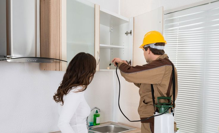 Our #pestcontrolservices covers every pest infestation that happens throughout each season which effects your house, hotels, restaurants, factories, households, offices and hospitals.