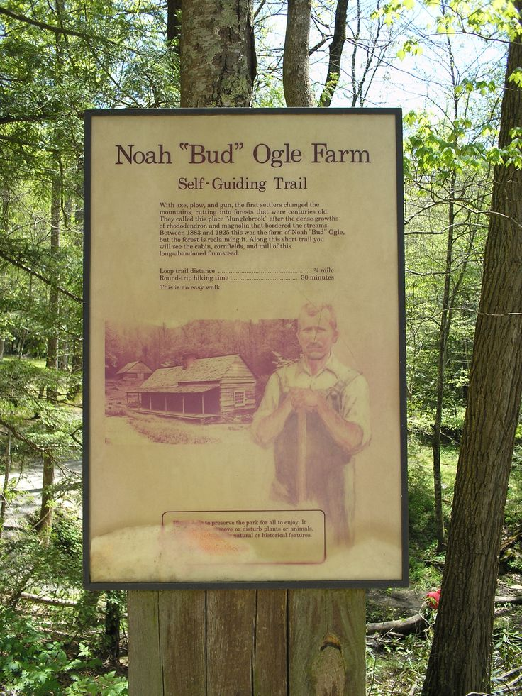 On The Roaring Fork Motor Trail Gatlinburg Tn Places