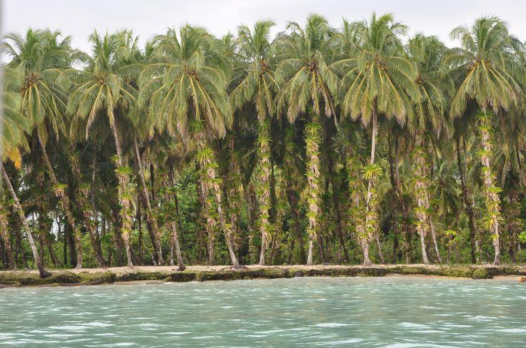 Isla Zapatilla, Bocas del Toro, Panama