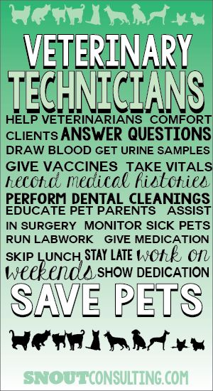 We know veterinary technicians work hard like veterinarians! Re-pin if you're a vet tech, and visit www.snoutconsulting.com for tips to help your hospital. #veterinarian