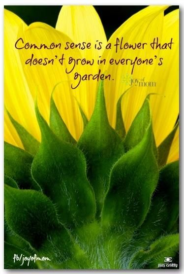 Common sense is a flower that doesn't grow in everyone's garden. <3 If you love inspirational quotes, come visit us on Joy of Mom! <3 https://www.facebook.com/joyofmom #inspirational #quotes #joyofmom