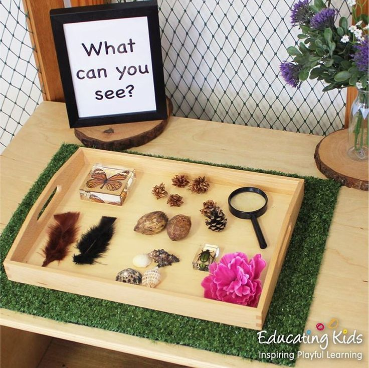 "79 Likes, 2 Comments - Educating Kids (@educating_kids) on Instagram: ""Magnifying glasses invite children to research and investigate new discoveries. #earlychildhood…"""
