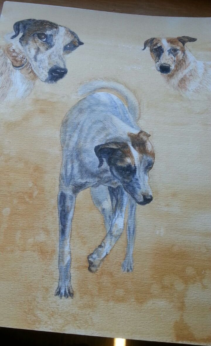 Wobbly, in water colour, by Gayner Vlastou