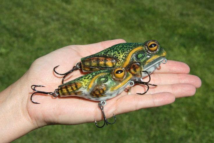 177 best fishing frogs images on pinterest frogs bait for Frogs for fishing
