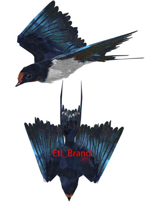 swallow/燕 https://www.facebook.com/pages/Etl_Brand/203727176394524?ref=hl