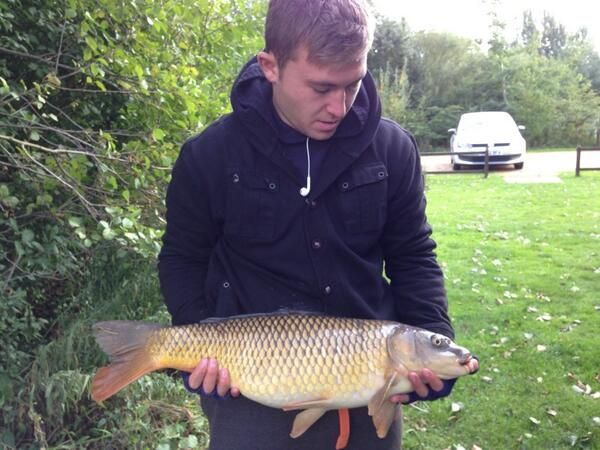 15 Best Images About Fishing With Dragon Carp Direct On