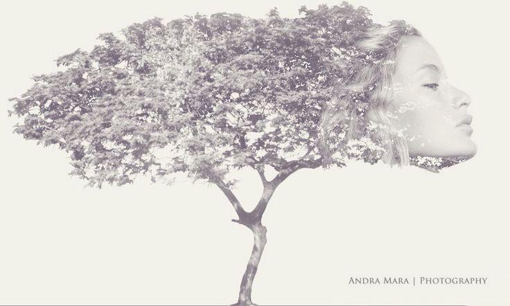 (C) Andra Mara