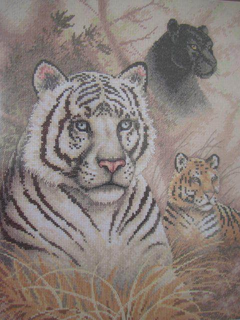 SeeSallySew.com - Eyes In The Wild Cross Stitch Needlework Bengal Tiger Panther Gold Collection Dimensions 35052 Kit ,…