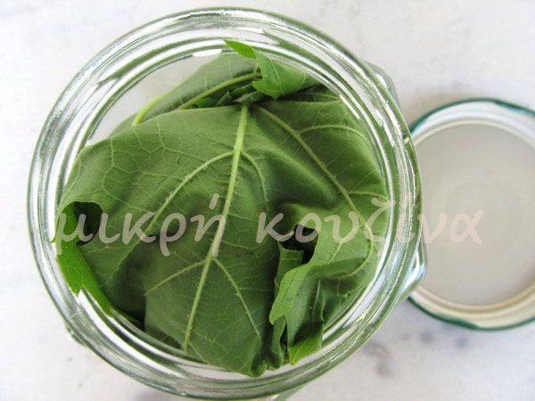 μικρή κουζίνα: Αμπελόφυλλα (κληματόφυλλα)-διατήρηση-συντήρηση
