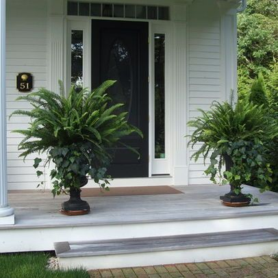 Urns - simple & classic - fern & ivy. Container garden. Entrance. Front porch. Container planting.