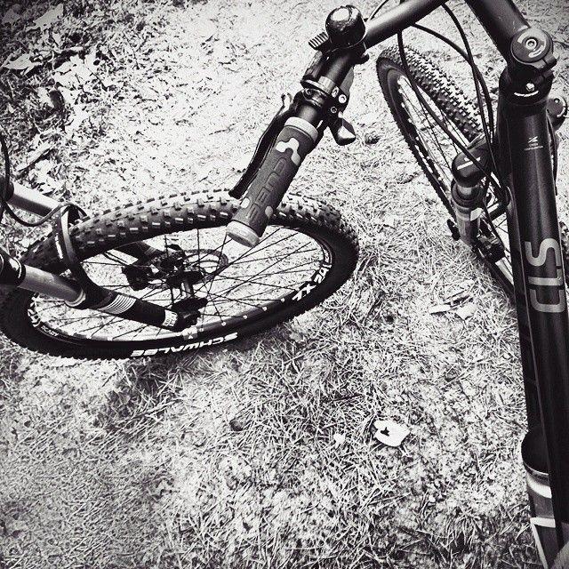 'Uaha #rowery dwa' Dominika Kołodziejska-Koza z APDK po godzinach Puszcza Kampinoska #rower #bikes #bike #nature_perfection #naturelovers #natureza #naturelover #attorney #lawyer #adwokat #adwokaci