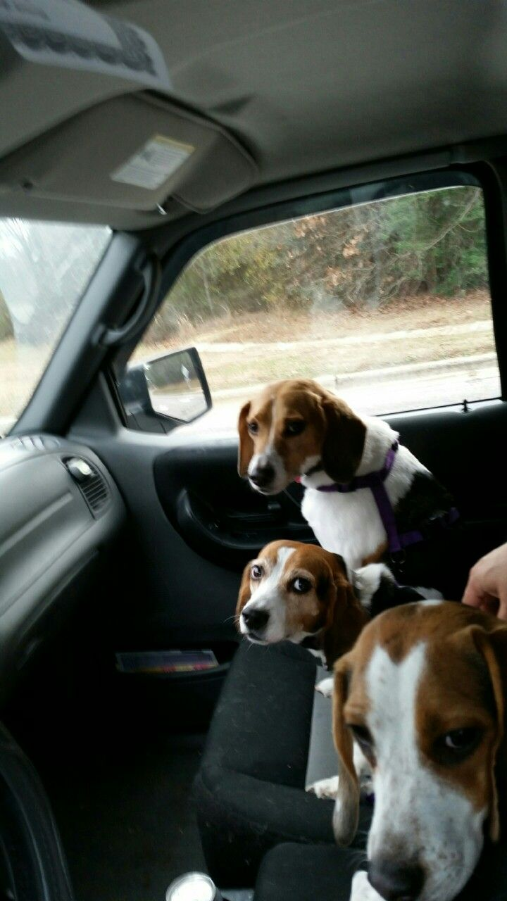 We are on our way home...with our daddy.