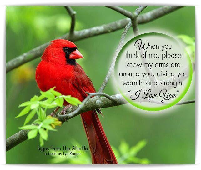 Pin by Linda Gelina Labbe on Commemorative sayings Bird