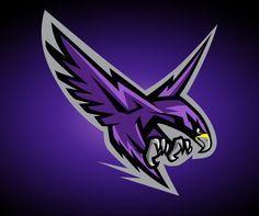 Montgomery College Raptors on Behance | American Logo Sport Theme