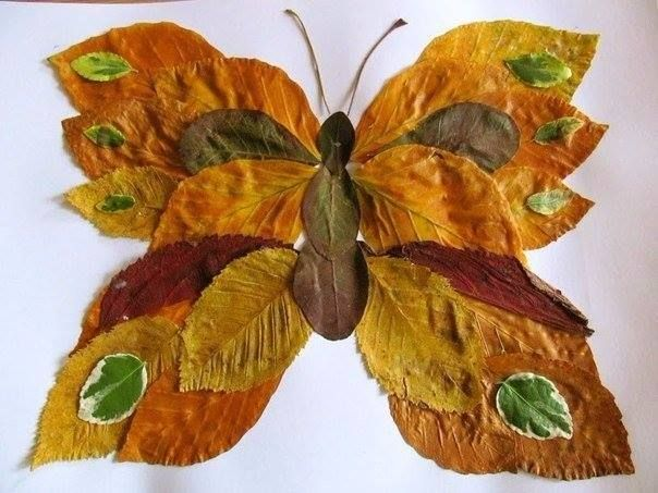 butterfly, made out of leaves