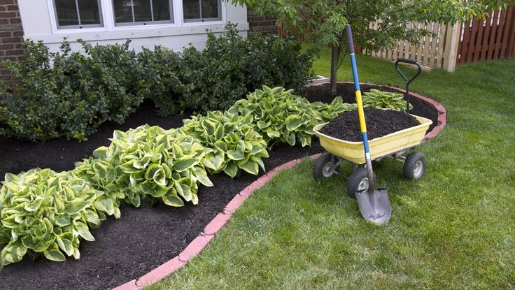 235 best compost mulch soil cover crops images on pinterest mulching flower bed fandeluxe Choice Image