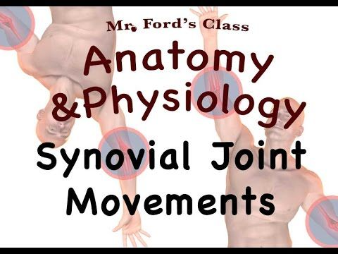 Joints and Articulations : Synovial Joint Movements (08:11) - YouTube