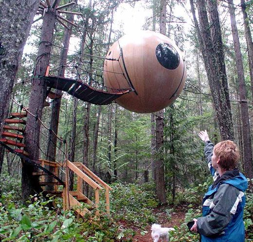 Living in the Treetops: Free Spirit Spheres