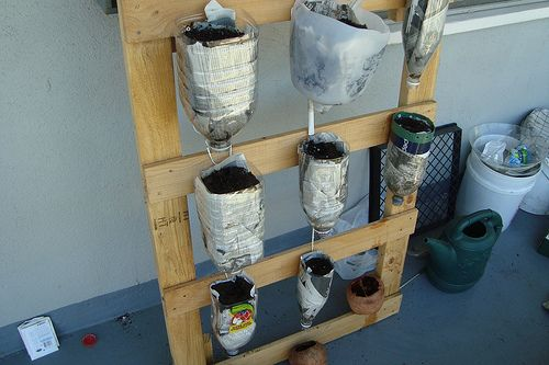 pallet garden: Plastic Bottle, Idea, Pallets Gardens, Vertical Gardens, Ships Pallets, Herbs Garden, Small Spaces, Sodas Bottle, Old Pallets