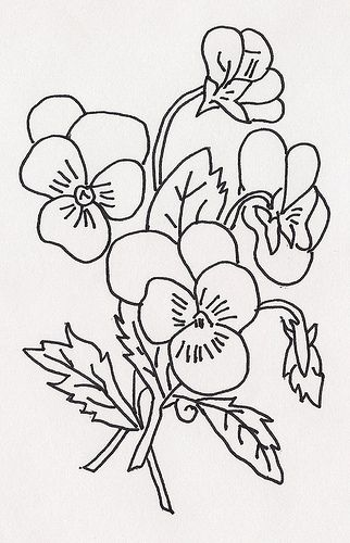 Violets by jeninemd, via Flickr
