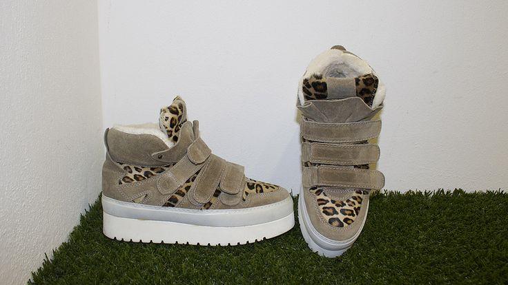 IMG_7522 Sneakers Soya Fish