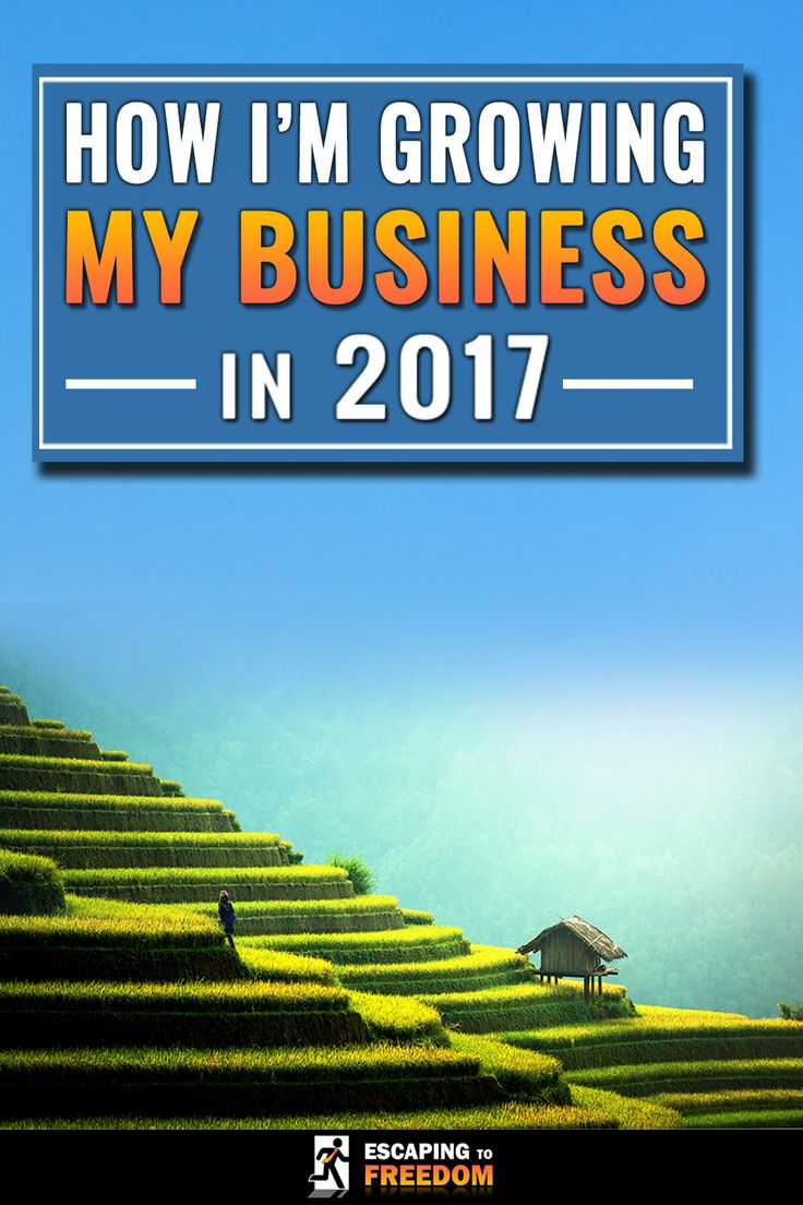 2017 is going to be the best year for Escaping to Freedom. Read one to find out how I'm going to ENSURE that it succeeds!