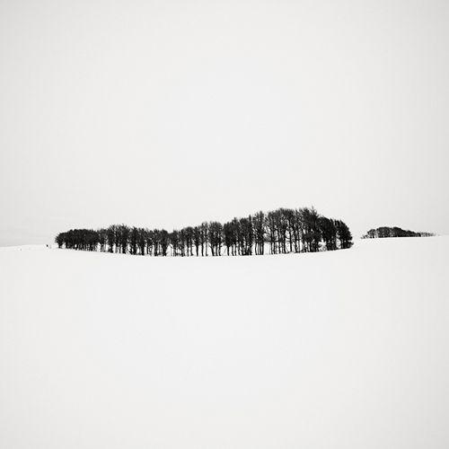 Josef Hoflehner Photographer   Japan