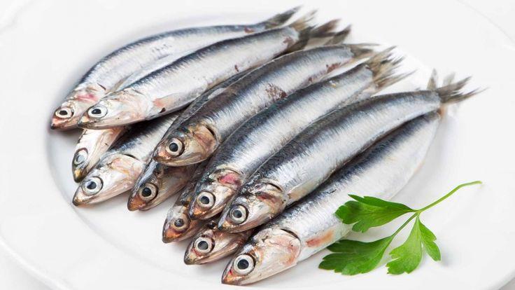 Sarde, sardine, ricette con le sardine pasta con le sarde uvetta alla siciliana