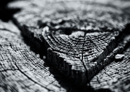 'Wood' by studio-toffa on artflakes.com as poster or art print $18.03