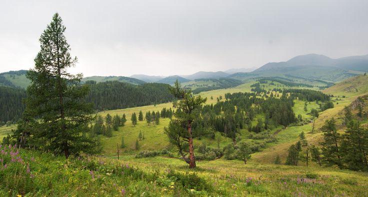 Altai by Vyacheslav Legostin on 500px
