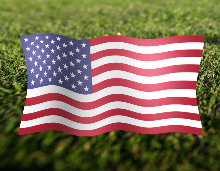 USA Fahne flexi WM 2014