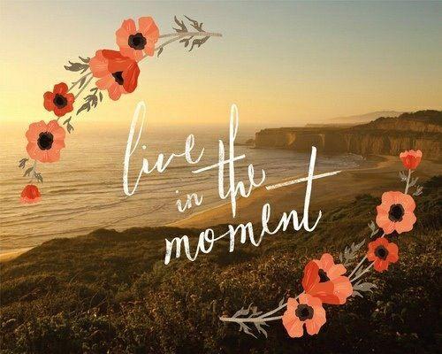 пляж, цветы, жить, момент, природа, цитаты, песок, море, лето, солнце, вода