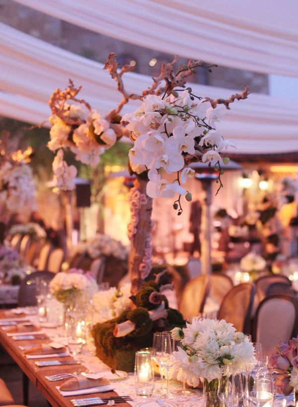 tall wood centerpieces with orchids and moss.