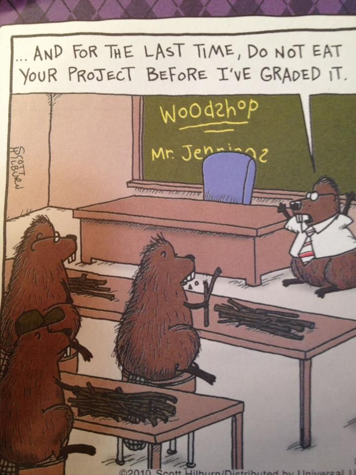 Innovative  About Woodworking Jokes On Pinterest  Woodworking Funny And Lol