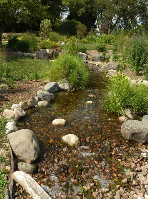 110 best rain gardens images on pinterest rain garden for Design of water harvesting pond