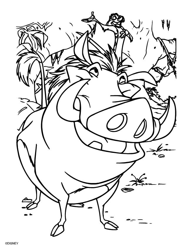 Excellent Color By Number Books Tiny Giant Coloring Books Regular Cool Coloring Books Curious George Coloring Book Old Vintage Coloring Books RedMunsell Color Book 103 Best THE LION KING Images On Pinterest | Disney Coloring Pages ..